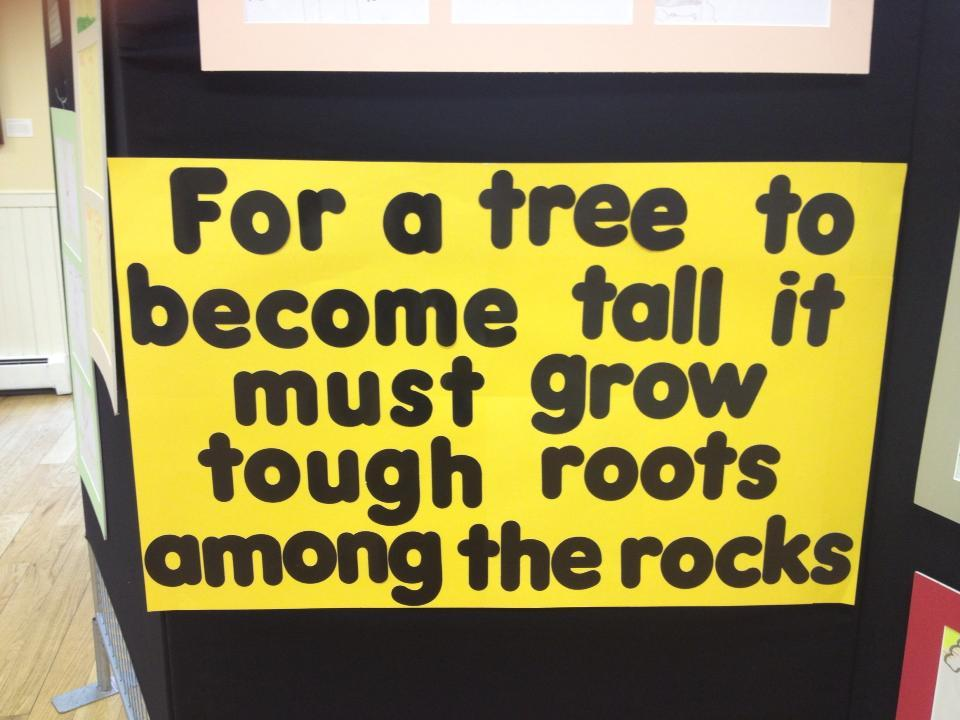 NOVA Trauma Tree quote