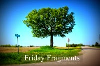 Friday Fragments Summer logo
