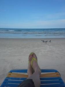 Florida Does Beach Feet