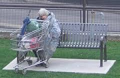 Homeless woman shopping cart
