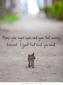 Quote keep moving forward kitten